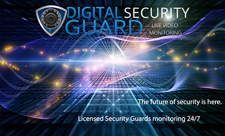 Virtual Security Guard